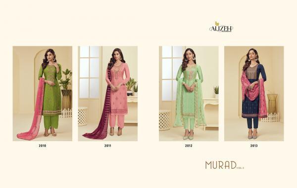 Alizeh Murad 2010-2013